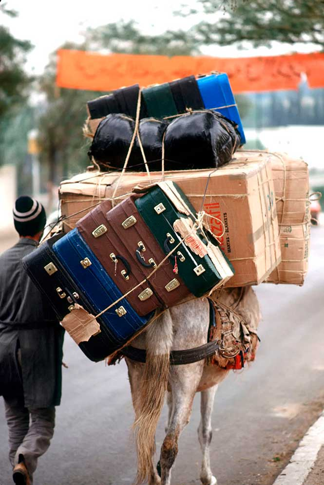 excess-baggage-donkey-taxi-Tangiers-Morocco-Ron Levy Photography