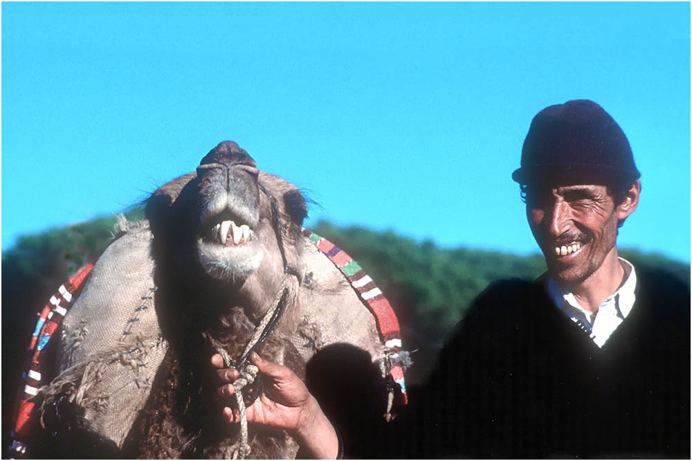 Arab-Man-camel-teeth-Tangiers-Morocco-Ron Levy Photography