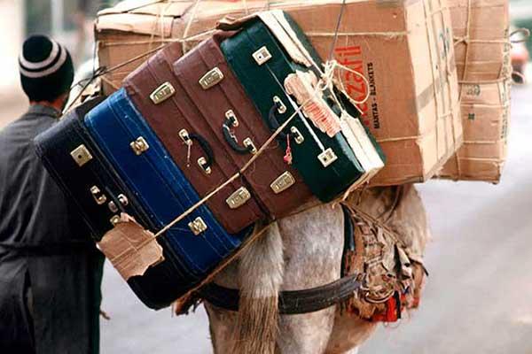 travel-box