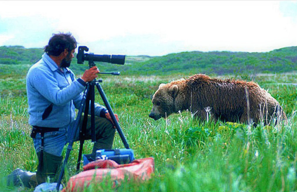 Photographer and grizzly bear, McNeil River, Alaska