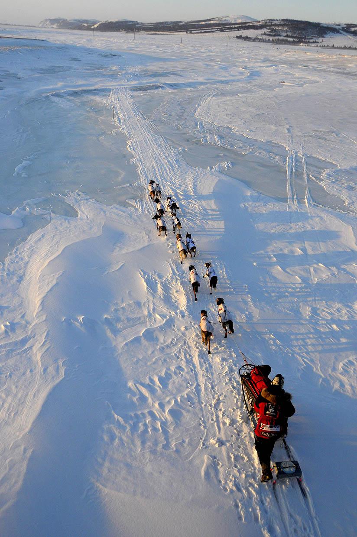 AilyZirkle_Iditarod
