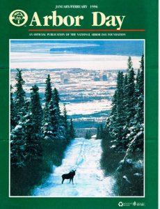 Moose above Anchorage, Alaska-Ron Levy
