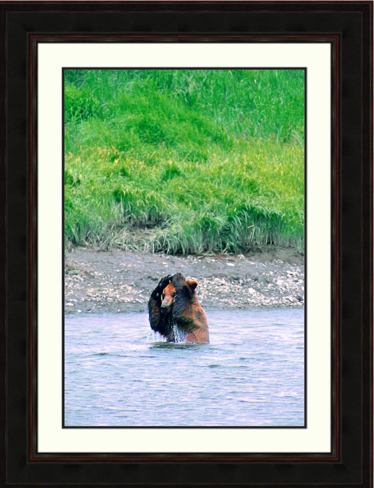 Bear_Prayer-brown-bear-playing-with-rock-McNeil river-Alaska-Ron Levy Photography