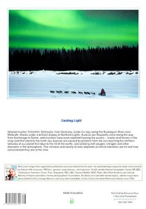 Aurora-Iditarod-dogteam-Alaska-notecard-Ron Levy Photography