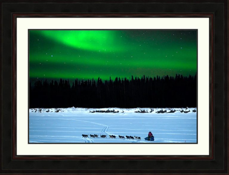 Aurora-Iditarod-dogteam-Alaska-Ron Levy Photography