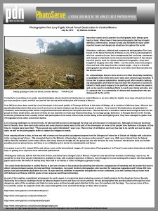 PDN-article-clearcutting-Mexico-Ron Levy Photography