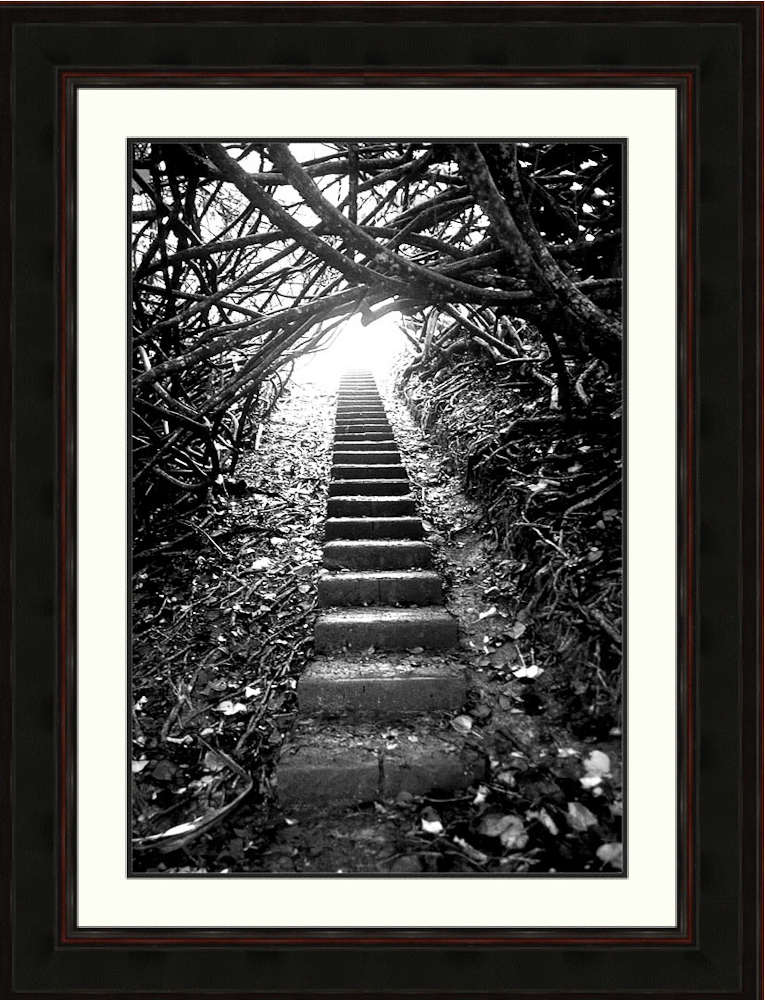 The-Journey-print-RonLevy Photography