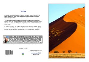 Yin-Yang-sand-dune-49-Sossusvlei-ostrich-Namibia-notecard-Ron Levy photography