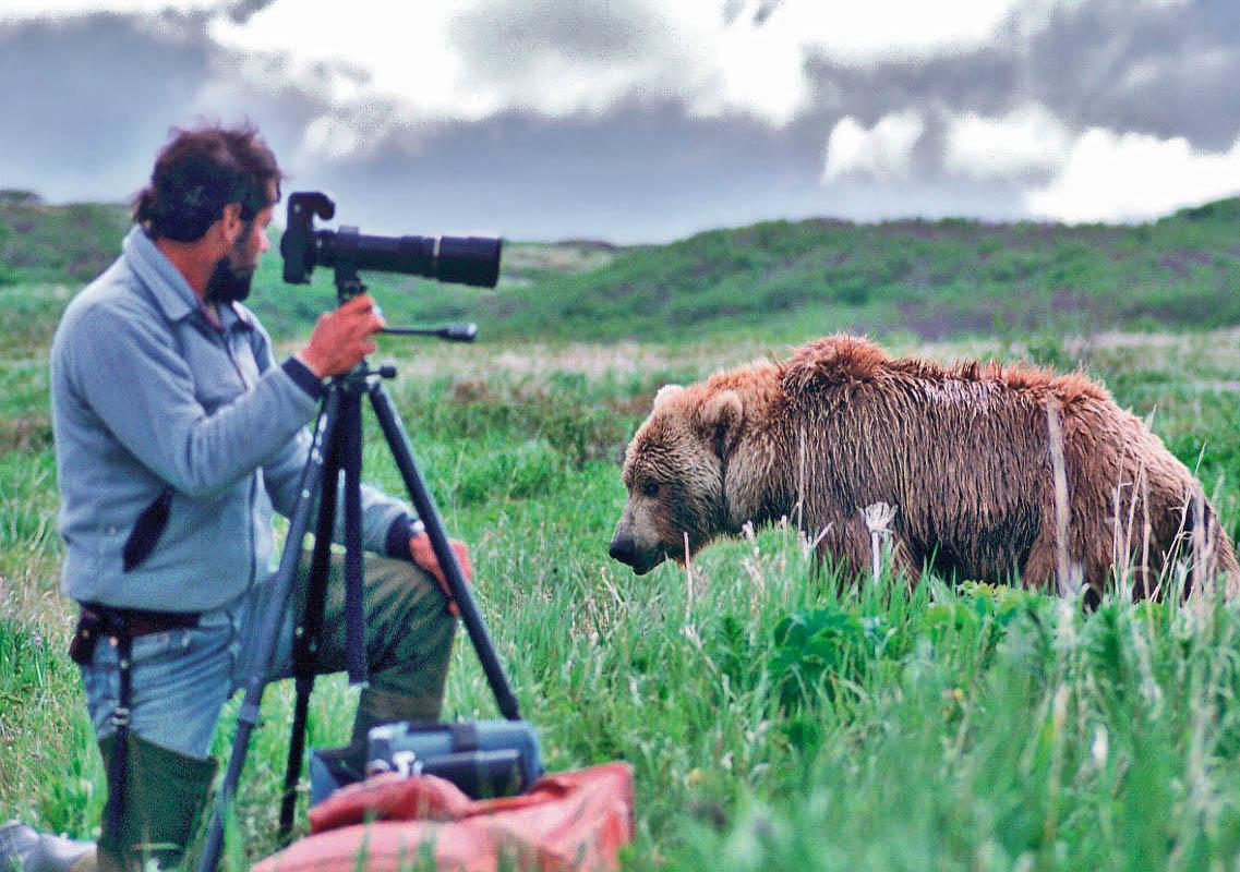 photographer-brown bear--McNeil River-Alaska-Ron Levy Photography