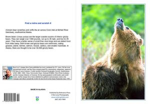 Grizzly-scratching-notecard-Alaska-Ron Levy Photography