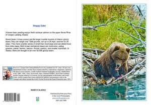 Grizzly-sloppy-eater-notecard-Alaska-Ron Levy Photography