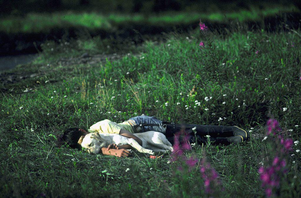 boy-dog-sleeping-meadow-Alaska-Ron Levy Photography