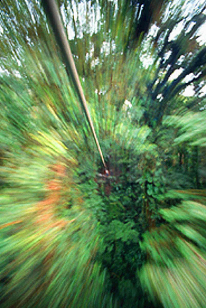 rainforest-canopy-slide-zoom-zipline-Costa Rica-Ron Levy Photography