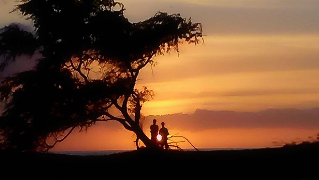 sunset-couple-silhouette-8x14-ronlevy